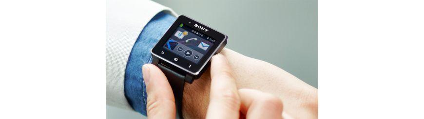 Sony SW 1